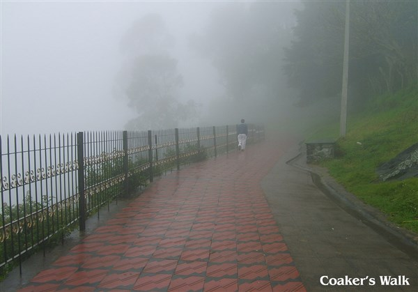 Kodaikanal & Kodaikanal 4 Days Tour from Katpadi to Katpadi.