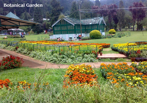 Botanical Garden, Ooty - Karthi Travels | Arni - Ooty Tour