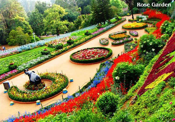Ooty 2-Days  Tour from Vaniyambadi to Vaniyambadi.
