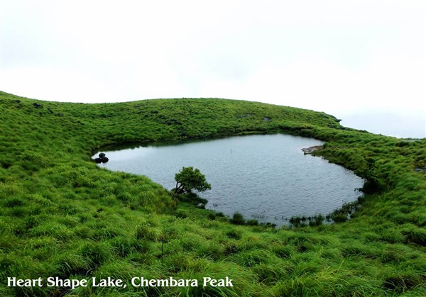 Wayanad 2-Days Sightseeing Tour from VIT to VIT.