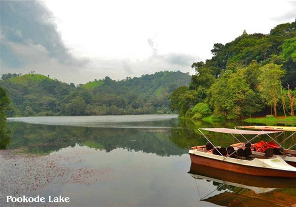 Coorg & Wayanad 4 Days Tour from VIT to VIT.